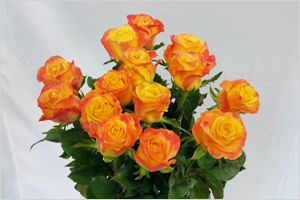 썸네일 이미지 : 소비 시장에서 인기 많은 국산 장미 한 자리에