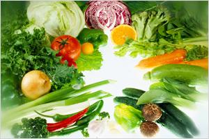썸네일 이미지 : 유통전문가 평가, 채소·과일 새 품종 보급 확대 이끌어